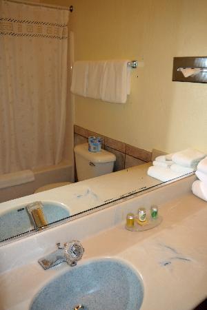 Surf Motel: Bathroom