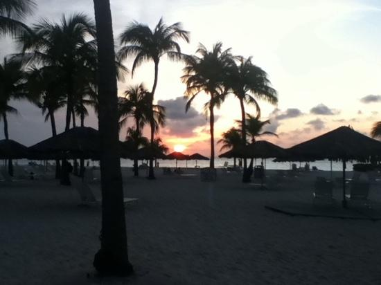 Bucuti & Tara Beach Resort Aruba: just steps away from the room