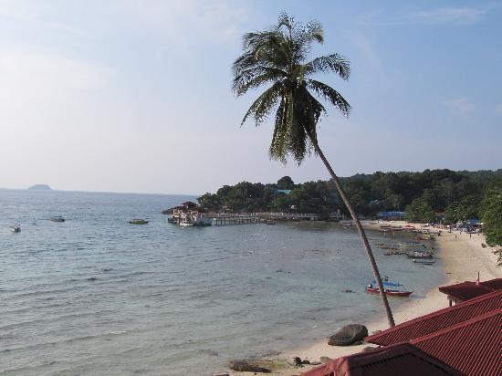 Senja Bay Resort: view from bungalow