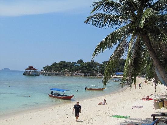 Senja Bay Resort: Coral beach