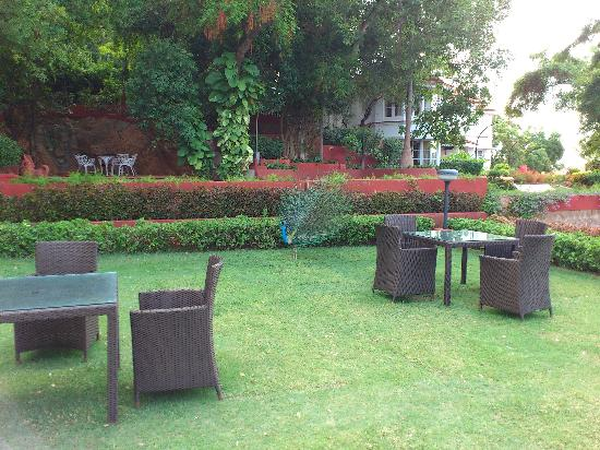 The Gateway Hotel Pasumalai Madurai: Peacock and seating area in the grounds.
