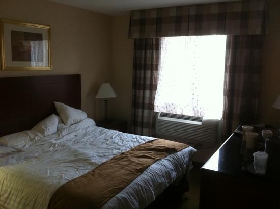 เบสท์ เวสเทิร์น พลัส อรีน่า โฮเต็ล: king Bed Room