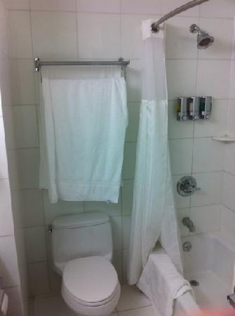 เบสท์ เวสเทิร์น พลัส อรีน่า โฮเต็ล: clean bathrooms