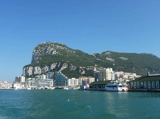 Dolphin Adventure: The Rock of Gibraltar