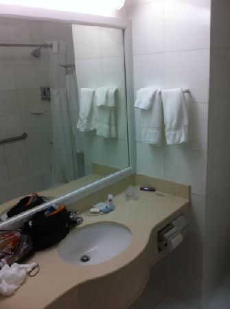 เบสท์ เวสเทิร์น พลัส อรีน่า โฮเต็ล: bathrooms