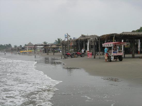 King David Tours: The beach