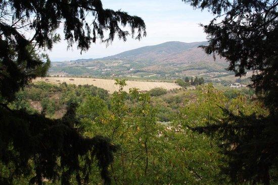 Montefioralle, อิตาลี: chianti views