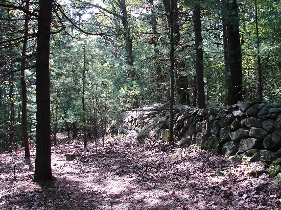 Great Brook Farm State Park: stone wall