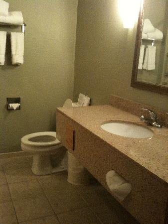 Holiday Inn Express Munising -  Lakeview: Large bathroom with counter space