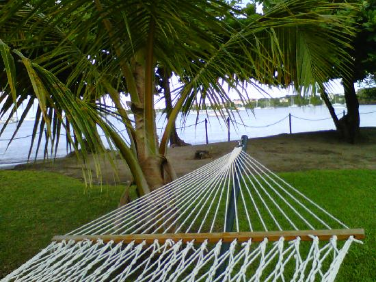 Lance Aux Epines Cottages: View from the hammock right outside the door