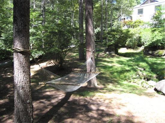 Pension Pine Wave: ハンモックや散策路などでゆっくり&のんびり。