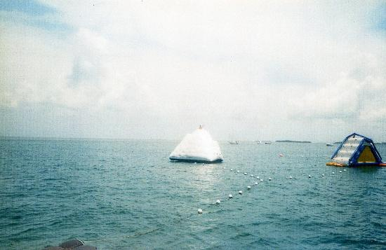 Fury Water Adventures Key West: Icebergs