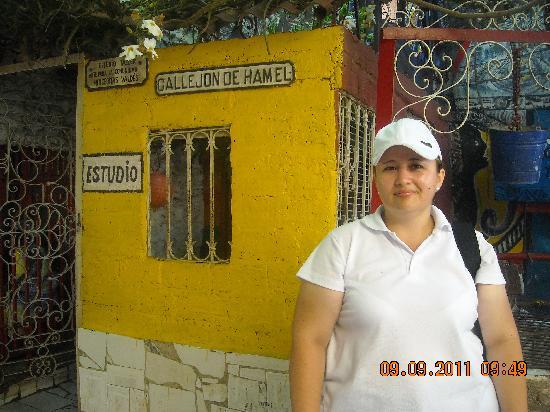 Callejon de Hamel: Callejon de Hammel_Estudio de Salvador González