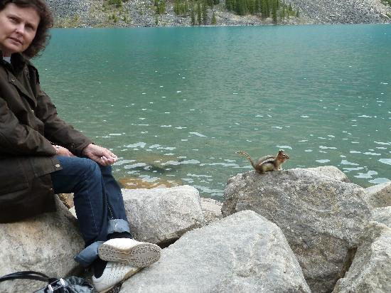 Moraine Lake: Sitting by Lake Moraine with ground squirrel