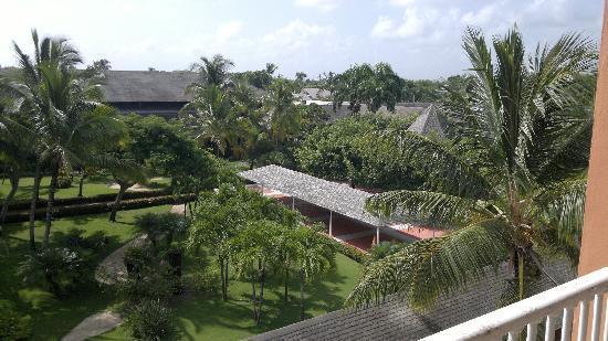 Iberostar Punta Cana: vista de los jardines