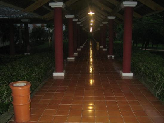 Iberostar Punta Cana: pasillo a las instalaciones