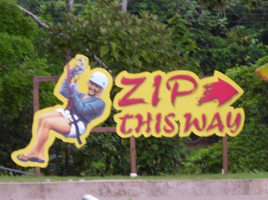 Clip N  Zip Canopy Tours: Tour sign