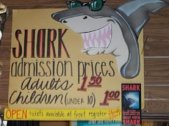 Ad, info. on Shark Attack attraction