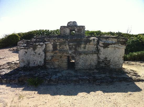 Faro Celerain Ecological Reserve: Mayan ruins