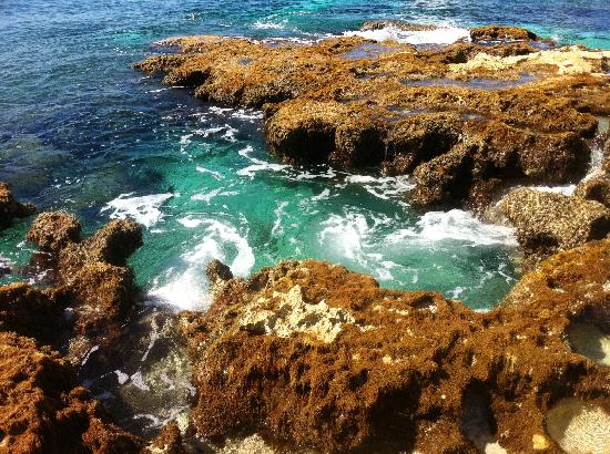 Faro Celerain Ecological Reserve: The coast outside the lighthouse