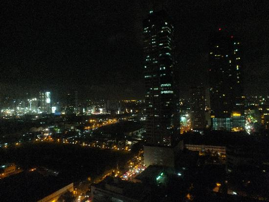 Astoria Plaza: Night view from bedroom