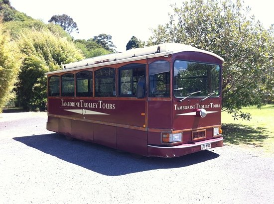 Tamborine Mountain Tours: trolley bus