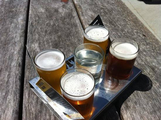 Tamborine Mountain Tours: beer tasting