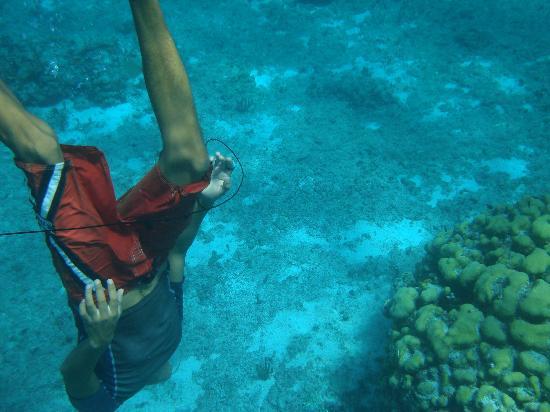Cozumel (เกาะโกซูเมล), เม็กซิโก: Aguas transparente