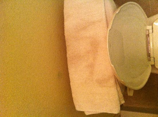 Motorsports Inn and Suites : Nothing like a dirty towel to ruin a stay