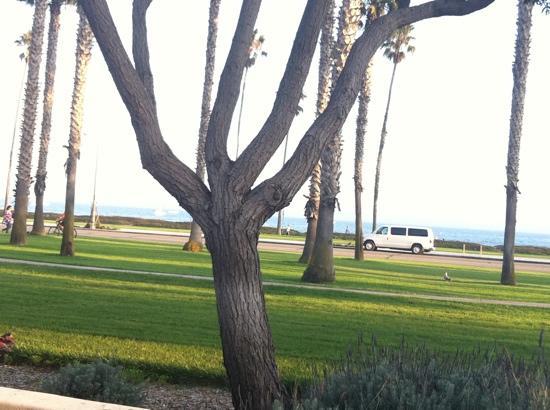 Hilton Santa Barbara Beachfront Resort: another view from room
