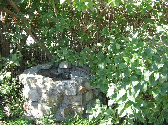Burch Family Restaurant: Thje Old Stone Well in shade of Lilac tree