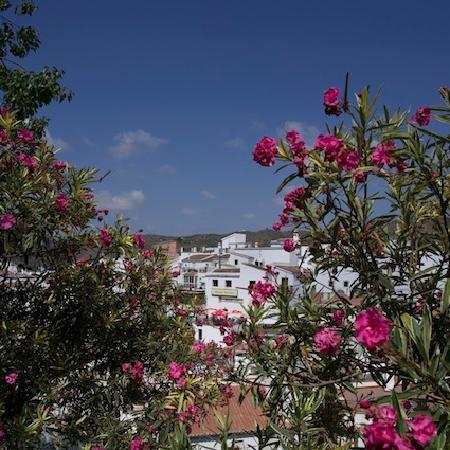 Azul Arenas Andalucia: Un village blanc.