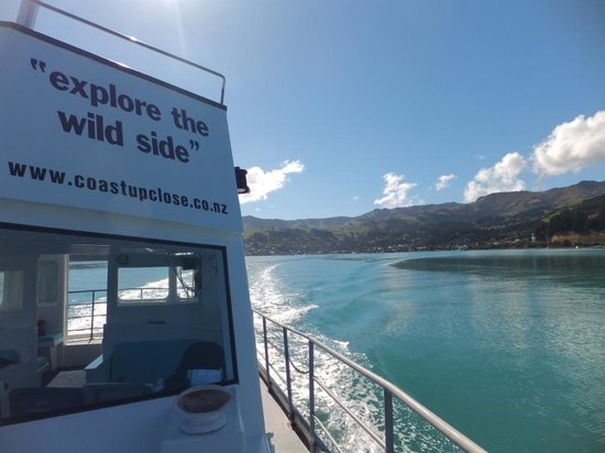 Coast up Close: Leaving Akaroa