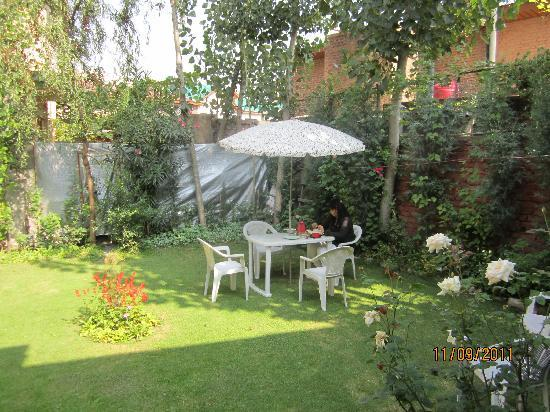 Hotel JH Bazaz (Happy Cottage): Hotel Garden
