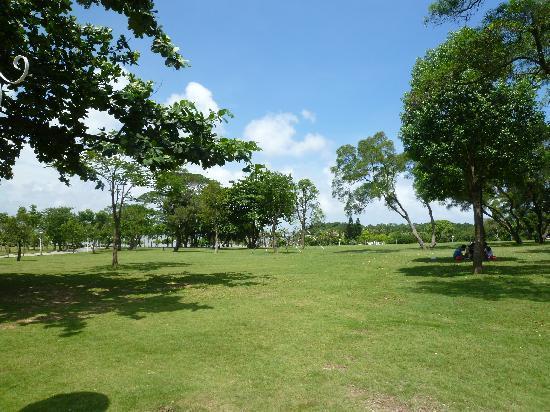 Zhuhai Seaside Park: 芝生の海浜公園