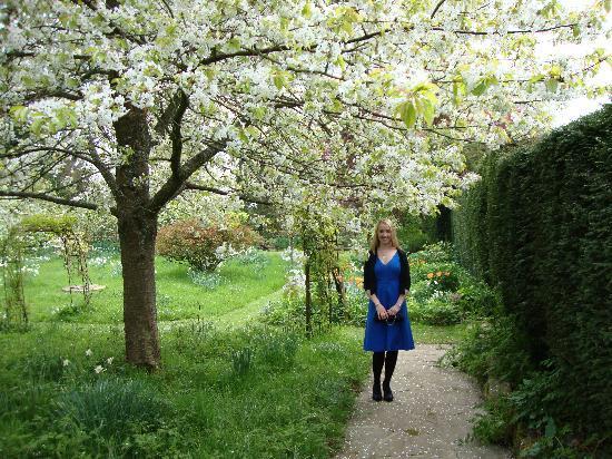 King John's Lodge: The garden