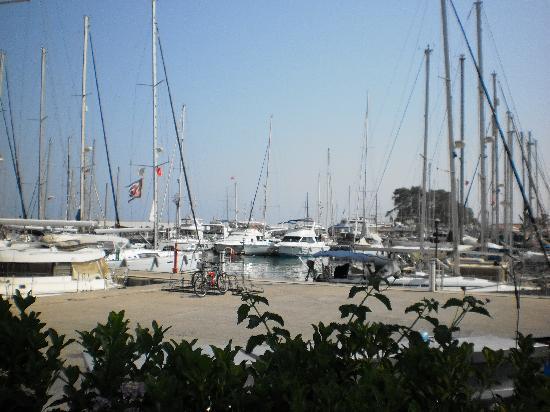 Orange Garden Hotel & Aparts: Near by marina