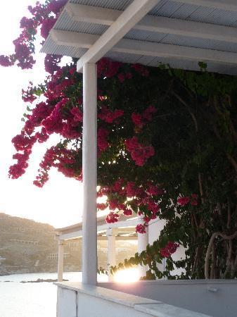 Vana Holidays Hotel: Esterno