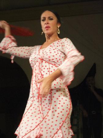 Tablao Flamenco Cardenal: ¡Olé!