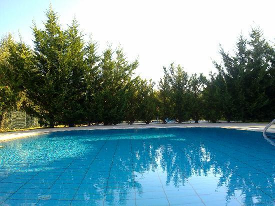 Rizolia Villas: Gorgeous little pool