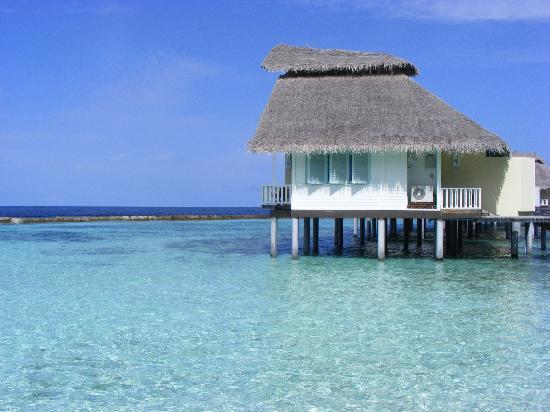 Ellaidhoo Maldives by Cinnamon: Water Bungalows