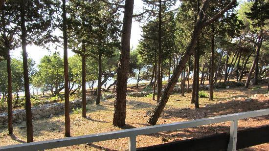 Valamar Girandella Resort: vue de notre chambre