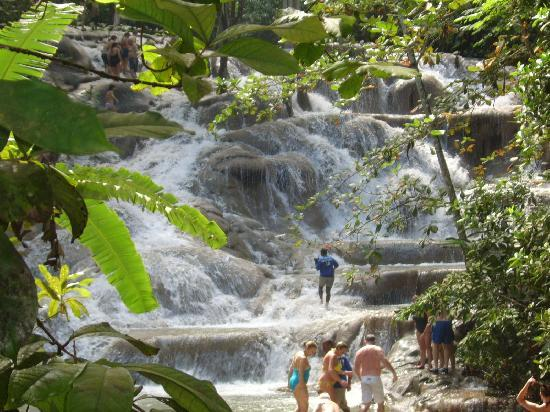 Dunn's River Falls and Park: dunns river falls