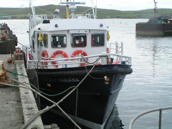 Papa Westray Hostel: Golden Mariana passenger ferry