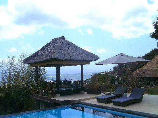 แพนดานา เกสท์เฮาส์: Pool area