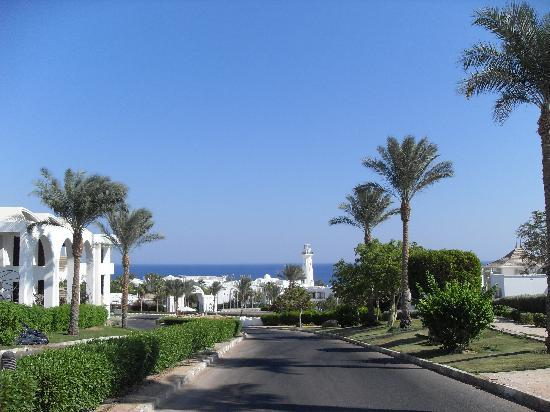 Tiran Island Hotel: Walk down to the beach