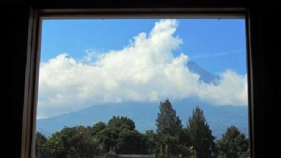 Chez Daniel: View Out Window