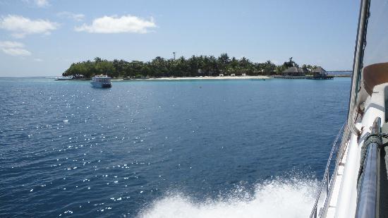 Vivanta by Taj Coral Reef Maldives: Arriving by luxury speedboat