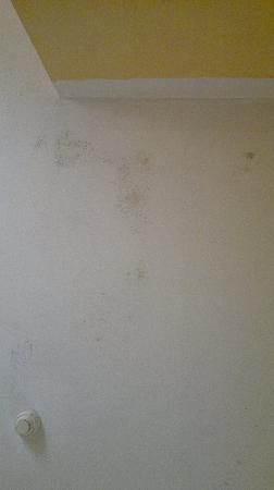 Florencio Hostal: humedad techo