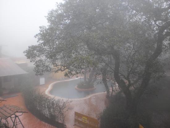 Hotel In Fog And Nice Swimming Pool Picture Of Saket Plaza Mahabaleshwar Tripadvisor